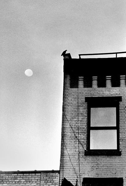 Peter Welch: Window & Moon